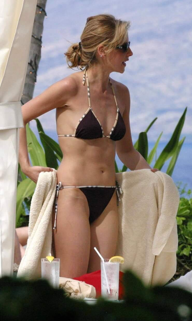 sarah michelle gellar bikini